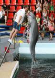 Йоана изскача от басейна, за да грабне рибата, която треньорът държи с уста. Снимки: Нели Томова