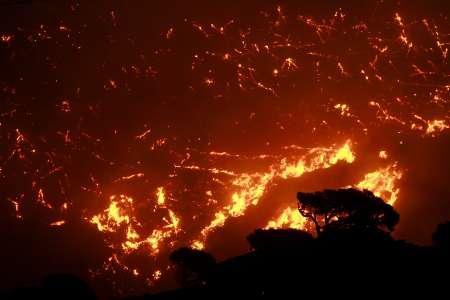 Големият горски пожар, бушуващ край Атина, навлезе в северните предградия на гръцката столица. Пожарът обхваща фронт от 40 км. Властите евакуират болници и жилищни сгради. Снимка: Ройтерс