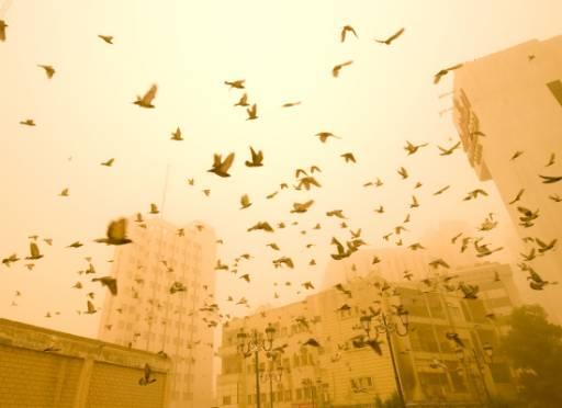 Силни ветрове в Кувейт