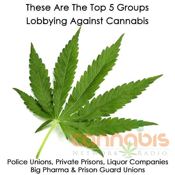 Кой епротив легализирането?