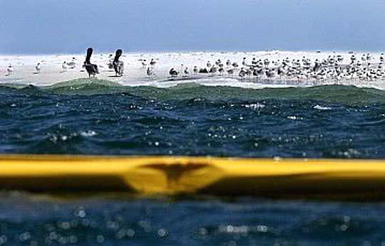 Петролното петно в Мексиканския залив напада брега
