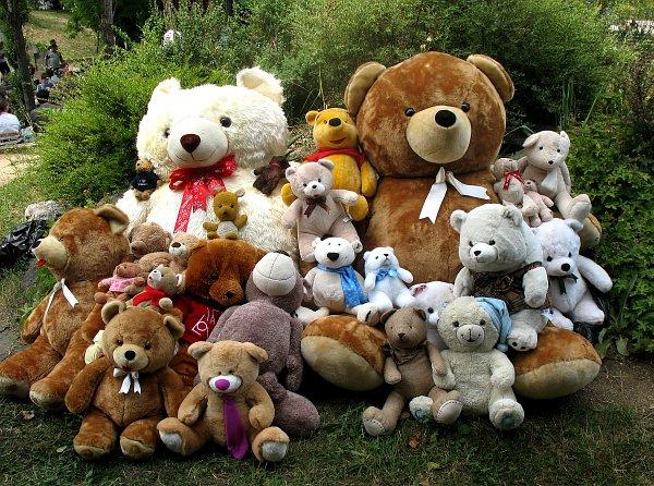 Двамата основни конкуренти в състезанието за най-голям мечок, заобиколени от други плюшени играчки. Снимка: авторката