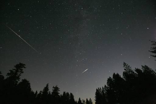 """Метеори от потока """"Персеиди"""" се виждат на небето над """"Фрейзър парк"""", Калифорния. Персеидите се появява на небето, когато Земята преминава през потока от отломъци на кометата """"Суифт-Тътъл"""" всяка година в началото на август. Остатъците от нея се сблъскат с атмосферата, те изгарят, често оставяйки ивици светлина в небето - така наречените """"падащи звезди"""". Снимка: Ройтерс"""