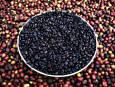 Етиопия пренася отглеждането на кафе в по-високи области заради климатичните промени