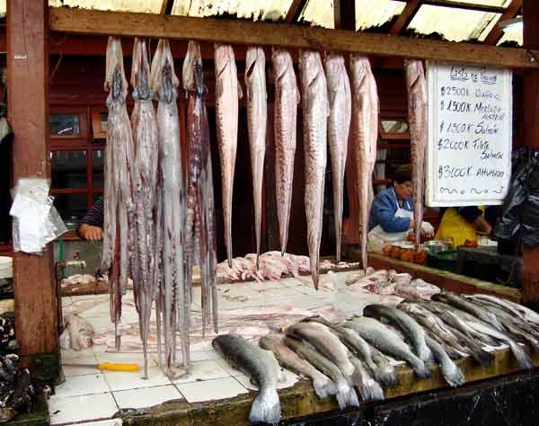 Рибарски магазин в Пуерто Монт. Денят, в който рибите изплуваха... Снимки: авторът