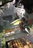 """Пчеларят разгонва пчелите с """"пушалка"""". Снимки: Николай Григоров"""