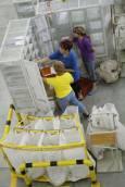 Работнички от центъра подреждат вече сортираната от машините поща. Снимки: Нели Томова