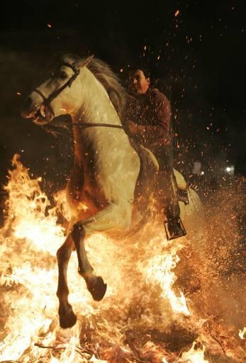 """Мъж минава с коня си през пламъци на ежегодните религиозни празненства """"Luminarias"""" в навечерието на деня на Свeти Антоний - покровител на животните в градчето Сан Бартоломе де Льоспинарес. Според традицията ездачите преминават с конете си през огъня, за да пречистят животните. Снимка: Ройтерс"""