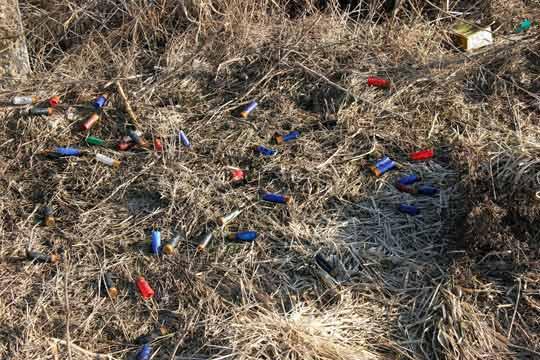 Патрони от последните стрелби край Шабленското езеро. Снимките са от 22 и 23 февруари т. г. Патроните не дават пълна картина, защото много ловци си събират гилзите. Снимка: Иван Бакалов