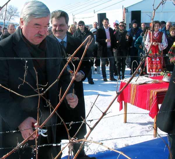 Руският посланик Юрий Исаков зарязва на Трифон Зарезан по стар стил лозето на