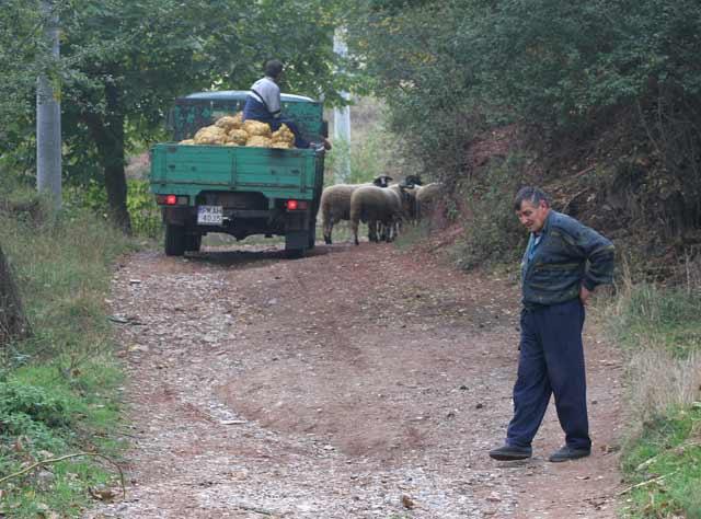 В едно от най-оживените села - Мрамор - живеят 15-17 души. Снимки: Иван Бакалов