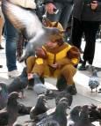 Дете храни гълъбите на площада. Снимки: Светослава Банчева