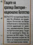 """Новините от """"Новинар""""."""
