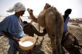 В Мавритания все още има роби
